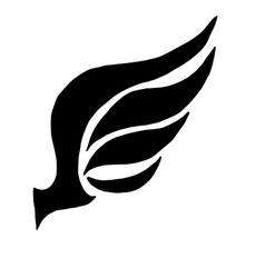 Wing concept for logo vector