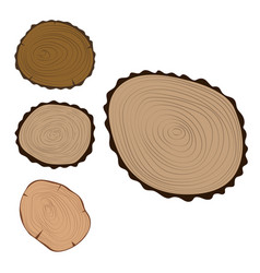 Wood slice texture tree circle cut raw material vector
