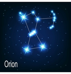 The constellation orion star in the night sky vector
