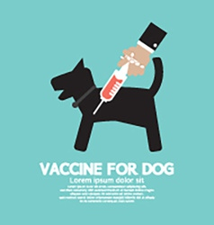 Dogs vaccine to prevent illness vector