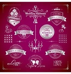 Big set of classic wedding vintage badges vector image