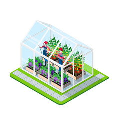 greenhouse isometric concept vector image