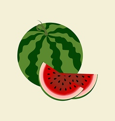 Watermelon fruit icon vector