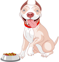 Hungry pit-bull vector