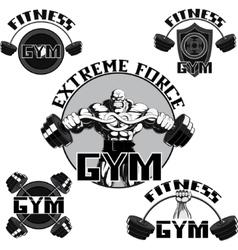 Set gym vector