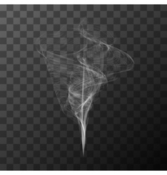 Transparent white smoke object vector image vector image