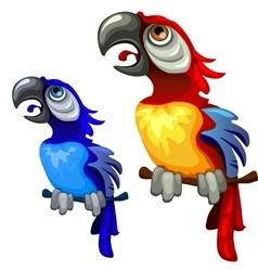 Two colorful blue and red tropical parrots vector image