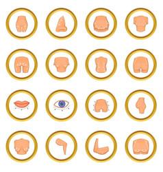 Plastic surgeon icons circle vector