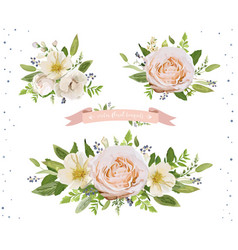 flower bouquet design object element set peach vector image