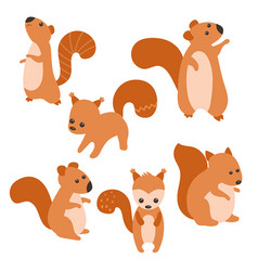 set of cute squirrels set of cute squirrels vector image vector image