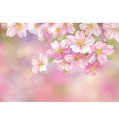Pink flowers background vector