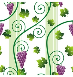 grape vine pattern vector image vector image