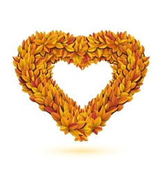 Heart of bright fall leaves vector image