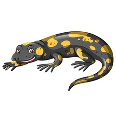 Lizard with black and yellow skin vector image vector image