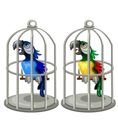 Two colorful tropical parrots in birdcage vector