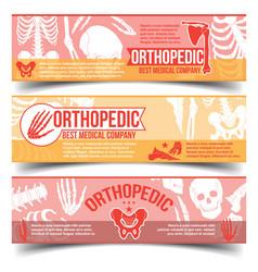 orthopedic banners with x-ray human bones vector image