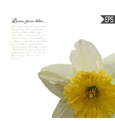 Floral invitation card with beautiful spring vector