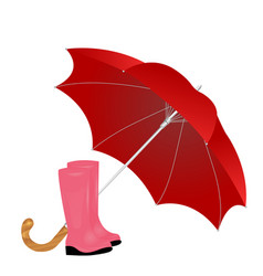 A pair of rainboots and an umbrella on a white vector