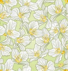 Seamless texture jasmine spring background vector