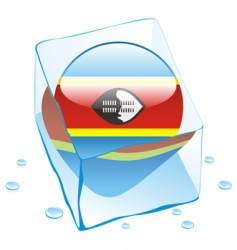 Swaziland flag vector image vector image
