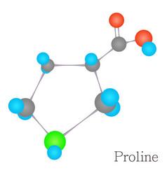 proline 3d molecule chemical science vector image vector image