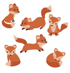 Set of cute foxes set of cute foxes vector