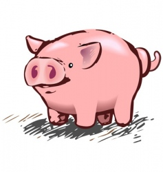 Pig illustration vector