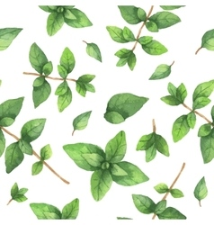 Watercolor seamless pattern hand drawn herb vector