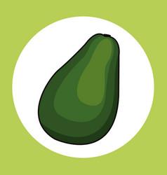 Avocado healthy fresh image vector