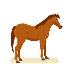 brown horse isolated on white background vector image