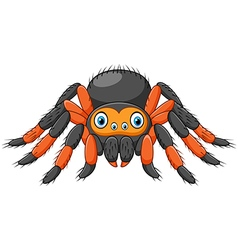 Cartoon spider tarantula with red knees vector