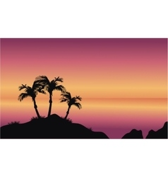 Coconut palms on beach vector image