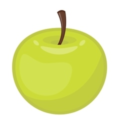 Fresh apple icon vector image