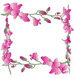 long orchids frame vector image vector image