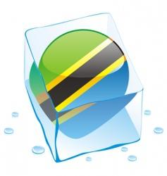 Tanzania flag vector image vector image