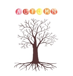 Autumn tree with without leaves vector image vector image