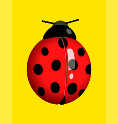 Graphic of a lady bug vector