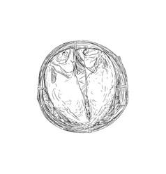 streaming short mackerel in a basket hand drawn vector image vector image