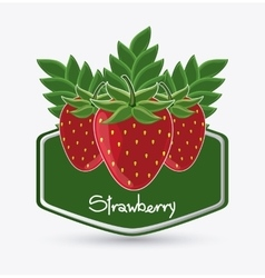 Strawberry fruit inside frame design vector