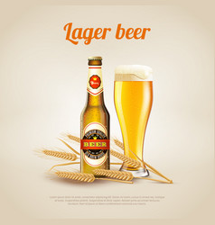 Lager beer background vector