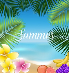 Summer holidays set vector
