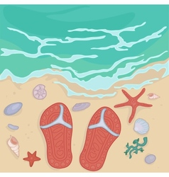 Flip flops on the shore vector