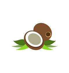 Coconut-380x400 vector image