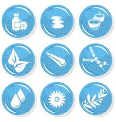 Spa and sauna beauty set vector image vector image