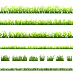 Collection of different types of green grass vector image