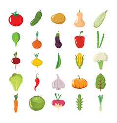 colorful cartoon icons set of fruits and vector image