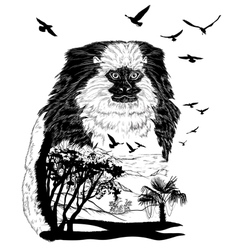 Monkey marmoset for your design wildlife concept vector