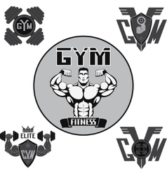set gym vector image