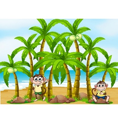 A beach with coconut trees and monkeys vector image