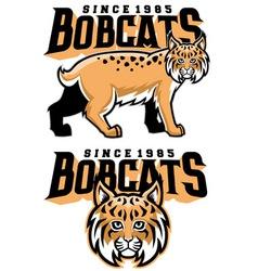 bobcat mascot vector image